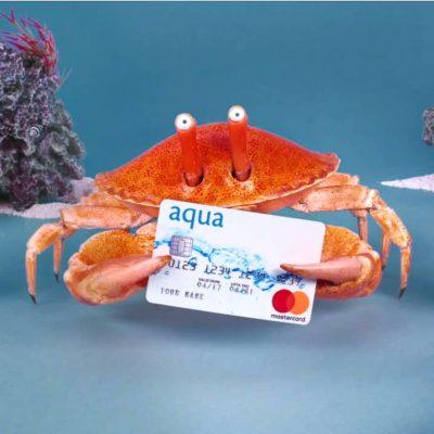 Aqua: Rockpool